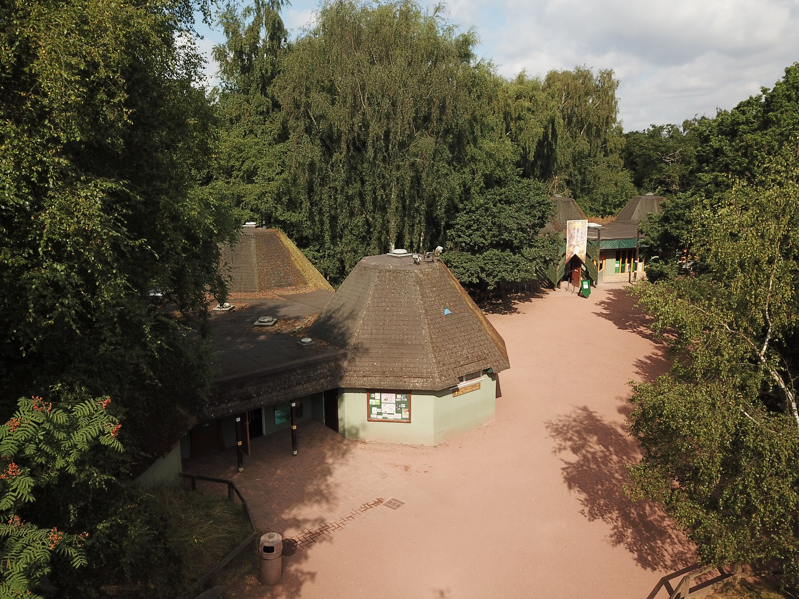 Sherwood Forest set to grow as part of restoration work