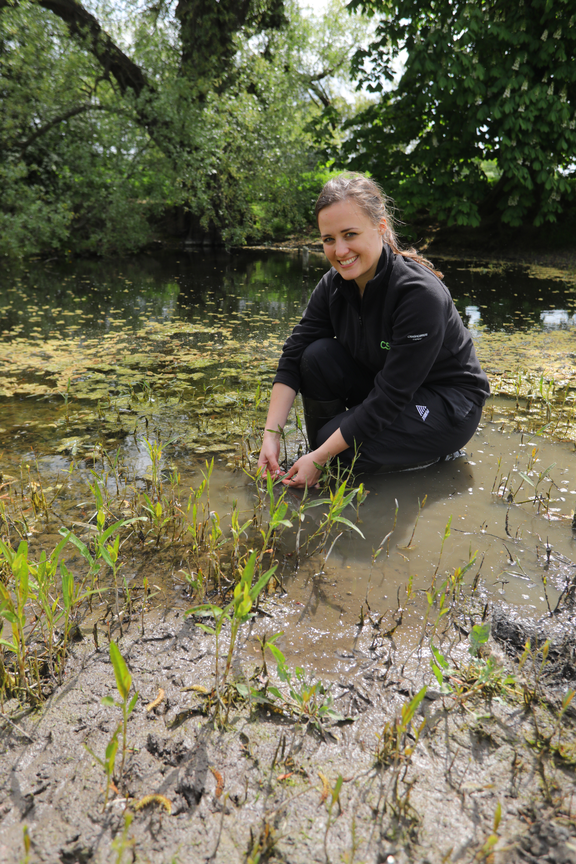 Kier Fenstanton Site Protects Great Crested Newts