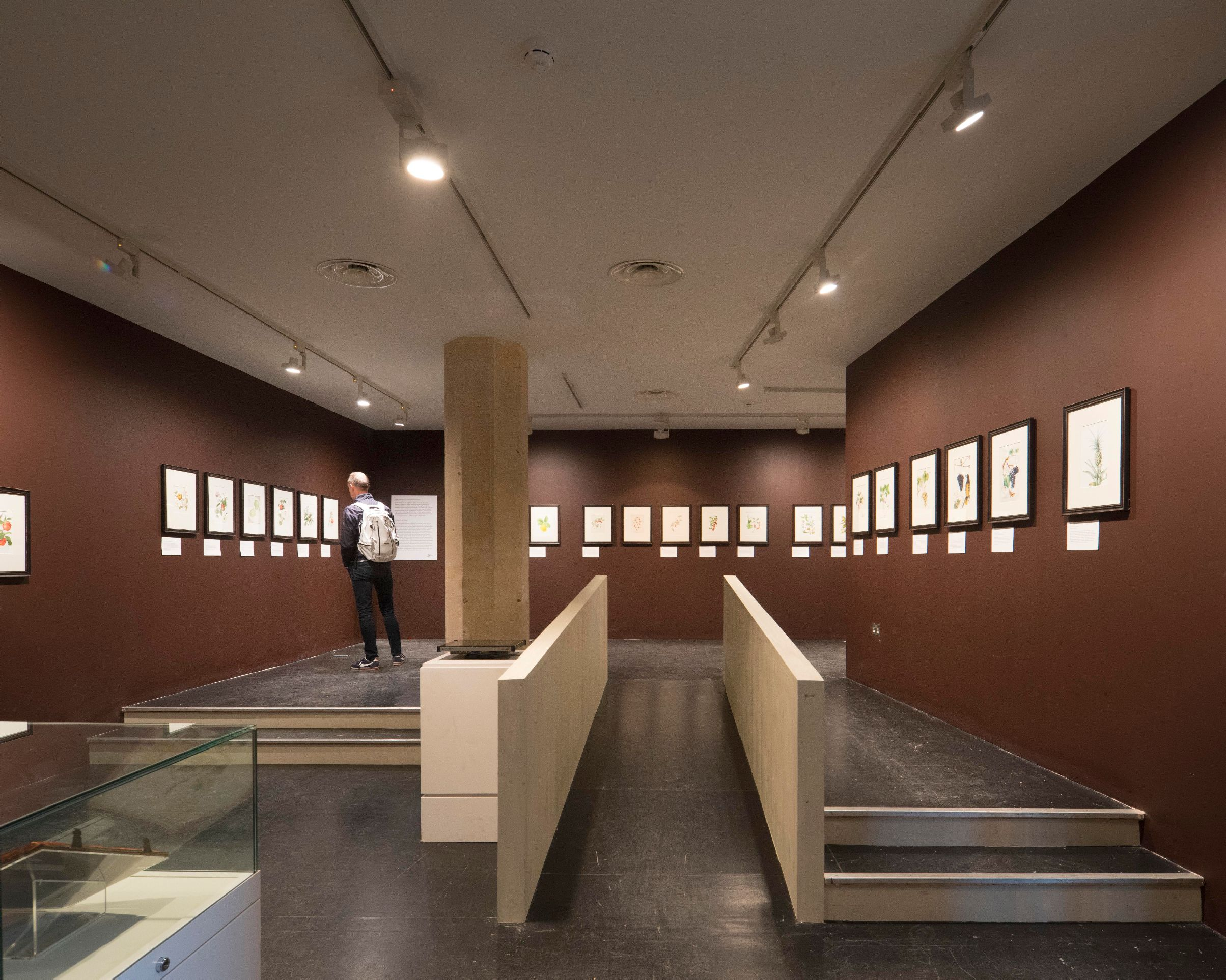 Perfect Museum Acoustic Solution from Sto