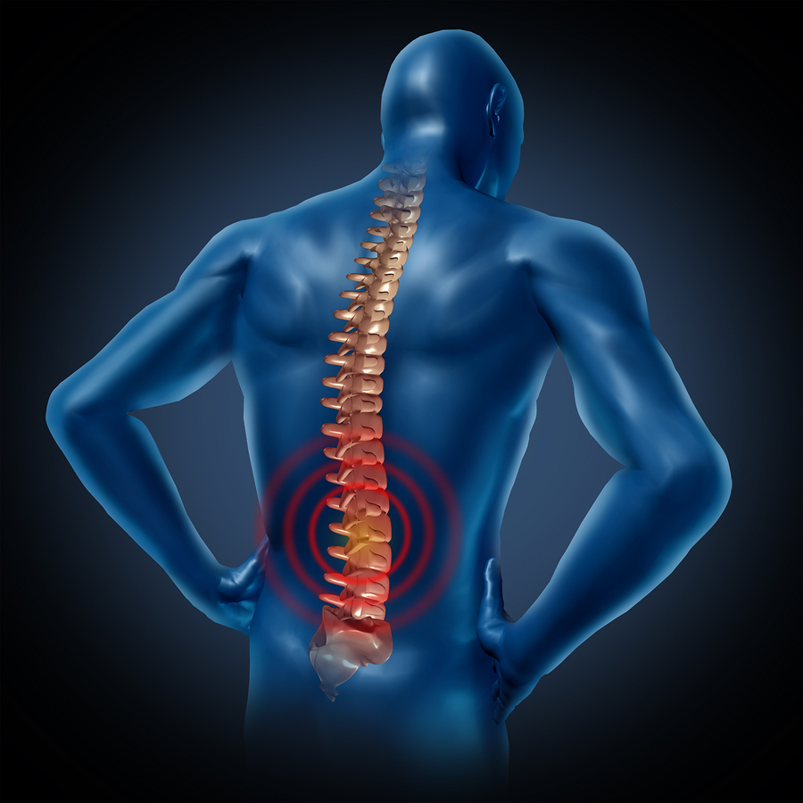 A guide to accommodating employees with musculoskeletal disorders