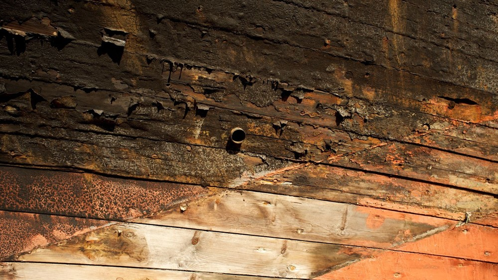 Wet rot, dry rot – is your listed building affected?