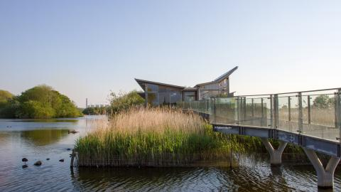 CEMEX Finalises Sale of Attenborough Nature Reserve