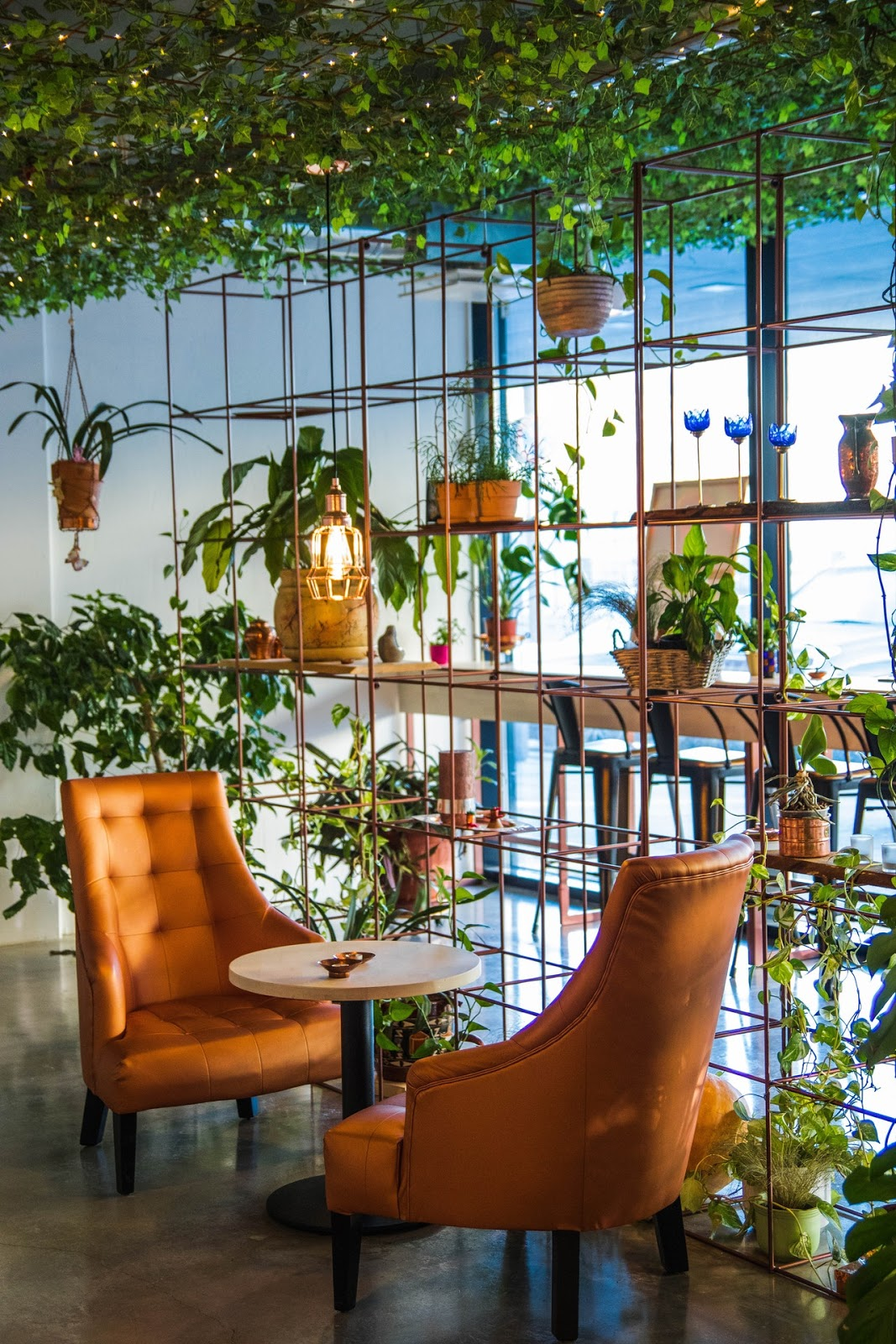 How to Create a Garden Oasis Indoors