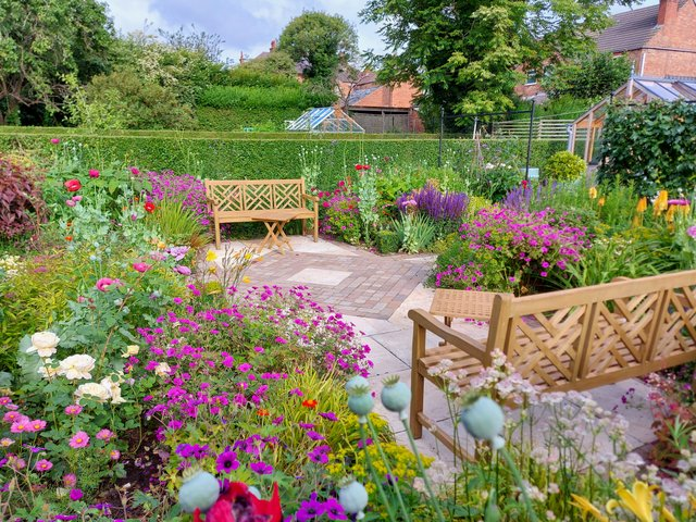 Tips and Tricks for a Beautiful Summer Garden